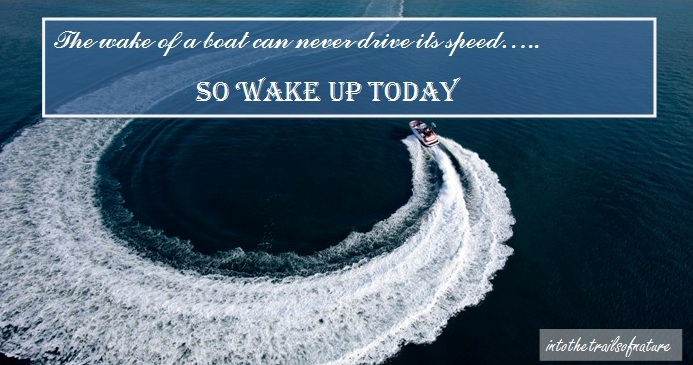 lessons from the wake